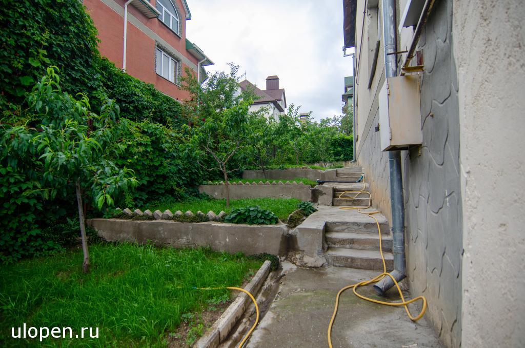 Сад во дворе дома, Симферополь. Купить